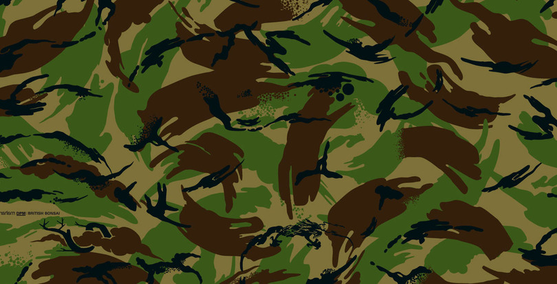 Call for Papers: Camouflage! Interdisziplinäre Forschung zum Verbotenen & Verborgenen