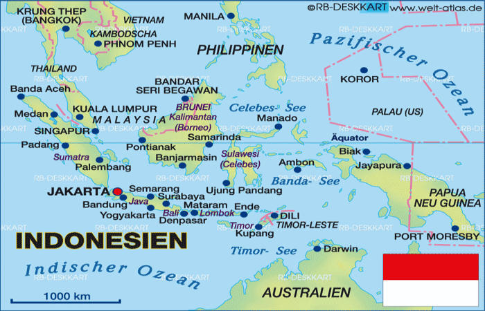 Port Security and Militarized NGOs in Indonesia LISA